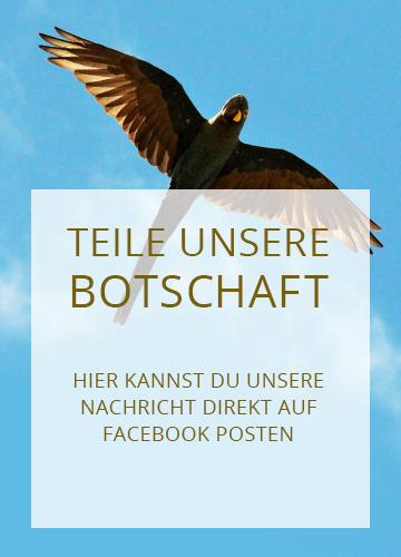 actp-facebook-02