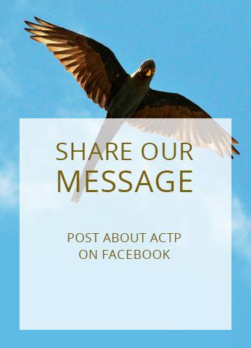 actp-facebook-eng-02